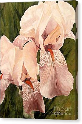 Canvas Print featuring the painting Pair Of Peach Iris  by Laurie Rohner