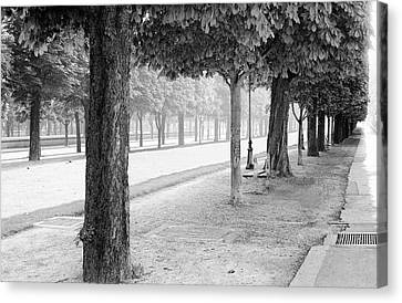 Canvas Print featuring the photograph Palais Park by Dave Beckerman