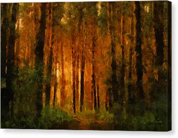 Palava Valo Canvas Print by Greg Collins