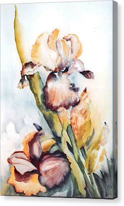 Pale Iris Canvas Print