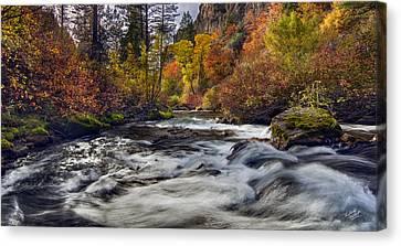Palisades Creek Autumn Light Canvas Print by Leland D Howard