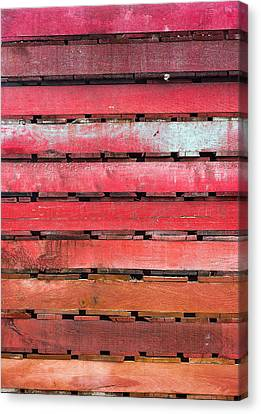 Pallette Canvas Print by Steven Maxx