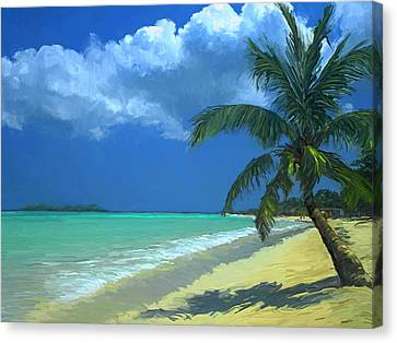 Palm Beach In The Keys Canvas Print by David  Van Hulst