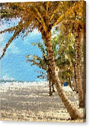 Palm Beach Shade Canvas Print by Anthony Fishburne