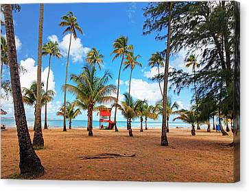 Palm Covered Tropical Beach Canvas Print by George Oze