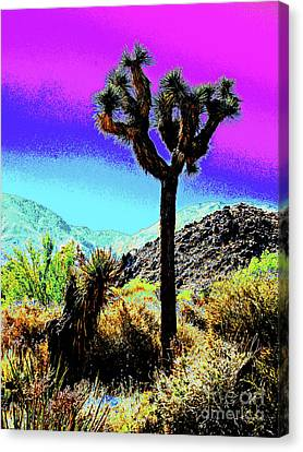 Palm Desert Cactus Canvas Print