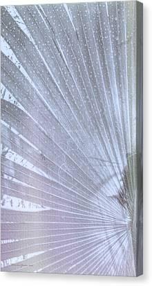 Palm Frond High Key Lh Canvas Print
