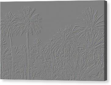 Palm Grove Canvas Print by Tetyana Kokhanets