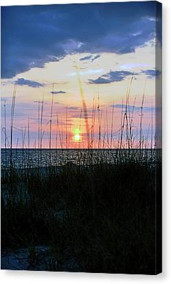Palm Island II Canvas Print