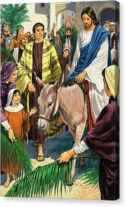 Palm Sunday Canvas Print by Clive Uptton