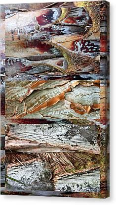 Palm Tree Bark Design Canvas Print