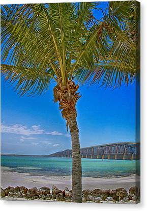 Canvas Print featuring the photograph Palm Tree Bridge And Sand by Paula Porterfield-Izzo