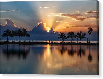 Palm Tree Framed Sunrise Canvas Print by Andres Leon