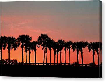 Canvas Print featuring the photograph Palm Tree Sunset by Joel Witmeyer