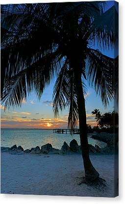 Canvas Print featuring the photograph Palm Tree Sunset by Stephen  Vecchiotti