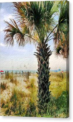 Palm Tree  Canvas Print by Theresa Campbell