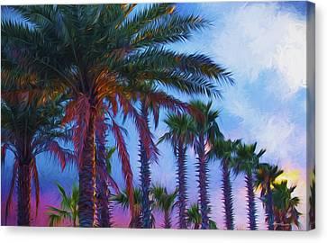 Palm Trees 3 Canvas Print by Glenn Gemmell
