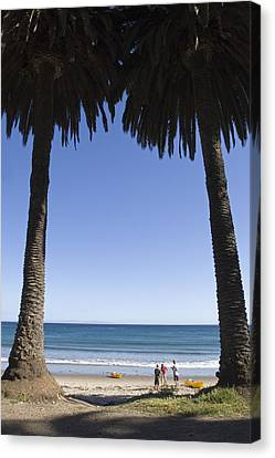 Palm Trees Frame Three People Canvas Print by Rich Reid