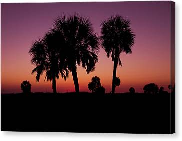 Canvas Print featuring the photograph Palm Trees Silhouette by Joel Witmeyer