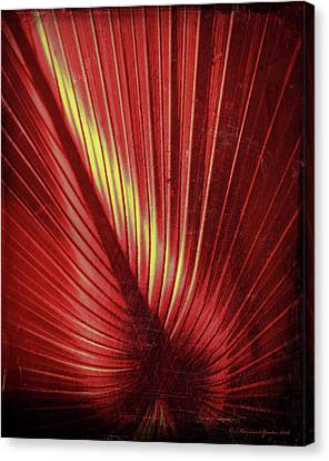 Palmetto Embrace Red Yellow Canvas Print