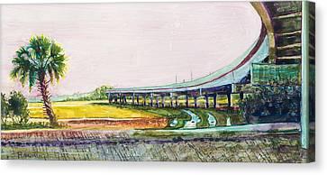 Palmetto Flyover Canvas Print