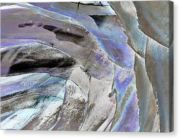 Layered Colors Canvas Print