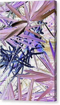 Palmpourri Canvas Print