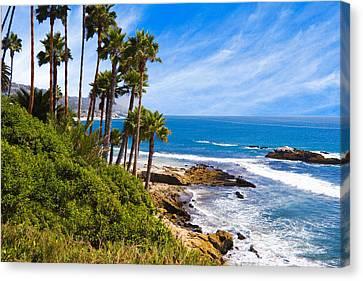 Palms And Seashore California Coast Canvas Print