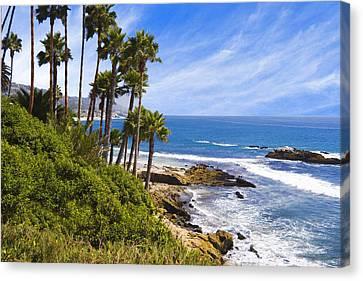 Palms And Seashore Laguna Beach California Coast Canvas Print