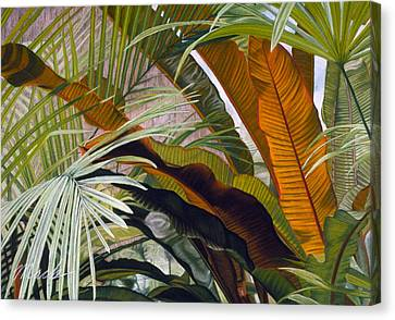 Palms At Fairchild Gardens Canvas Print by Stephen Mack
