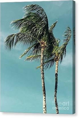 Canvas Print - Palms In The Wind by Karen Nicholson