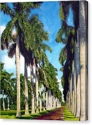 Palms Canvas Print by Jose Manuel Abraham