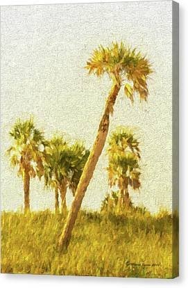 Palms On Canvas Canvas Print by Marvin Spates