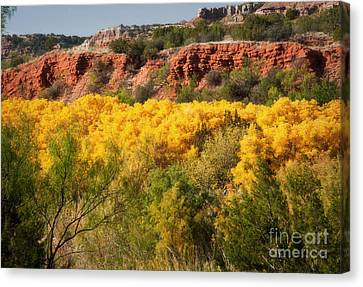 Palo Duro Canyon Fall Colors Canvas Print by Fred Lassmann