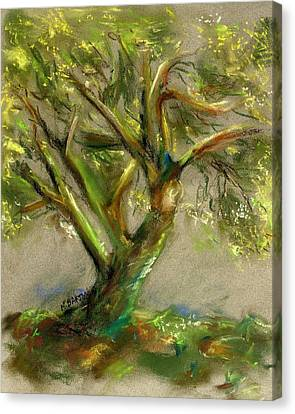 Canvas Print featuring the painting Palo Verde by Marilyn Barton