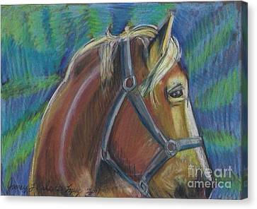 Palomino  Drawing Canvas Print by Jamey Balester
