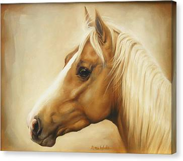 Palomino Canvas Print by Margaret Stockdale