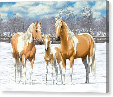 Palomino Paint Horses In Winter Pasture Canvas Print by Crista Forest
