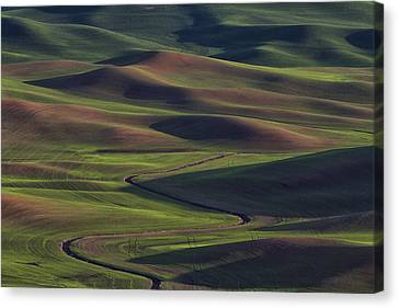 Palouse Abstract 1 Canvas Print by Mark Kiver