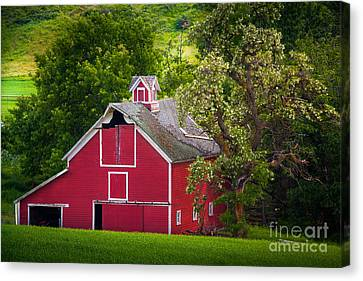 Palouse Barn Number 9 Canvas Print by Inge Johnsson