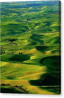 Palouse Morning Canvas Print by Mike  Dawson