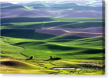 Palouse Patchwork Canvas Print