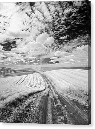 Palouse Road Ir 1029 Canvas Print