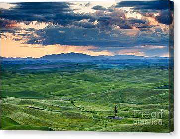 Palouse Storm Canvas Print by Mike  Dawson