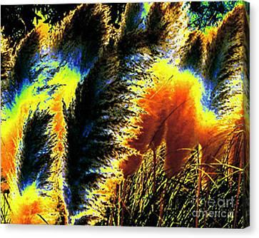 Canvas Print featuring the photograph Pampas Grass 1 - Digital Art by Merton Allen