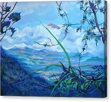 Panama. Anton Valley Canvas Print by Anna  Duyunova