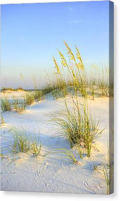 Panama City Beach Canvas Print by JC Findley