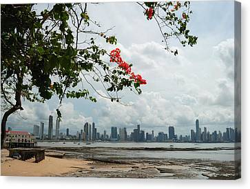 Panama City Downtown Canvas Print