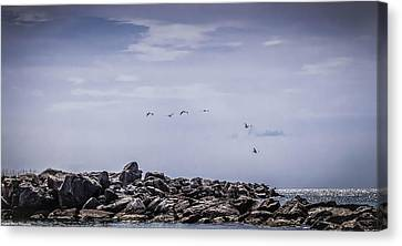 Panama City Beach Canvas Print - Panama City Jetties  by Debra Forand