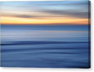 Panning Canvas Print by Kelly Wade